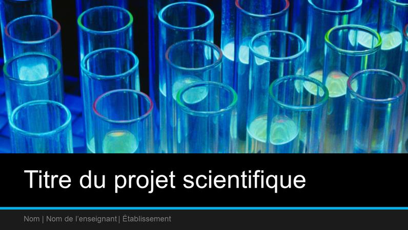 Présentation du projet scientifique (grand écran)