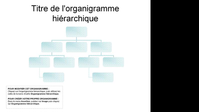 Organigramme hiérarchique de base