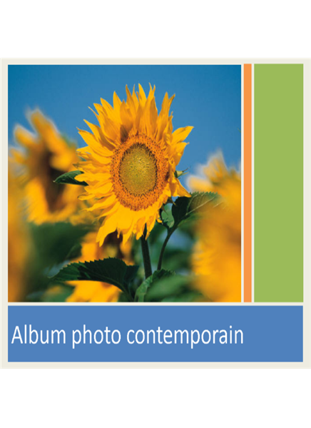 Album photo contemporain