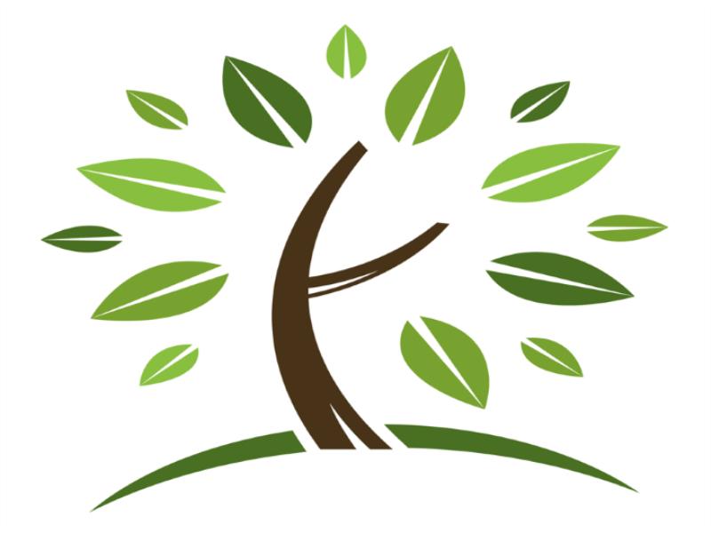Thème écologie - Arbre