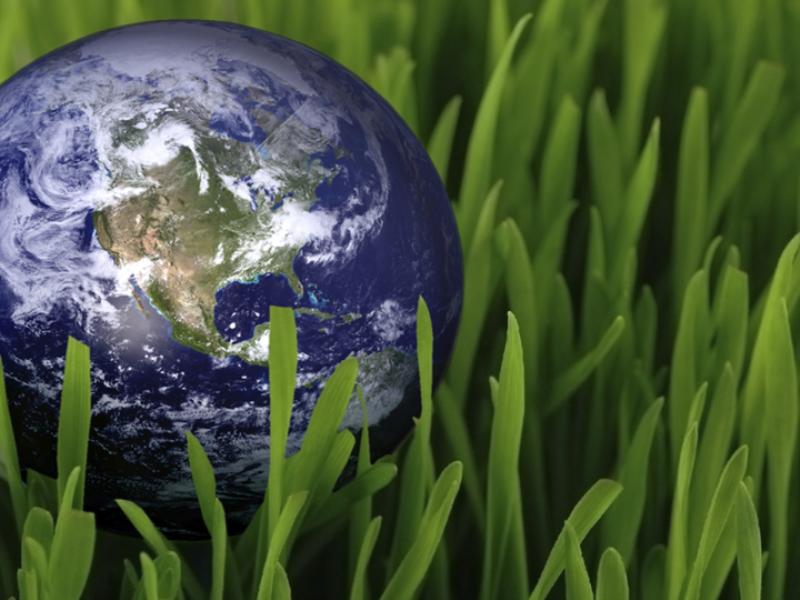 Thème écologie - Terre sur herbe