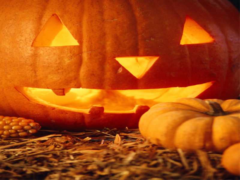 Thème halloween - Citrouille en gros plan