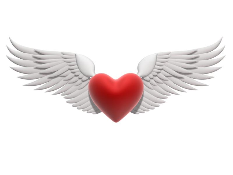 Thème Saint Valentin - Concept coeur d'ange