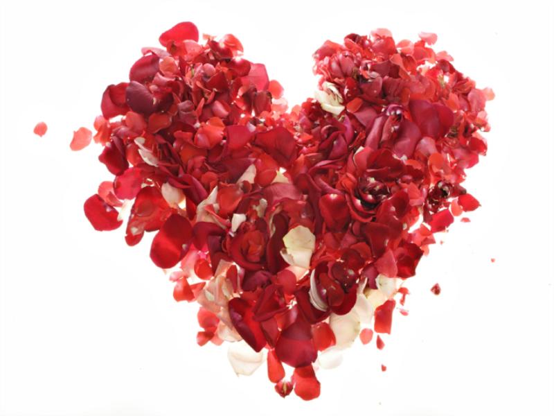 Thème Saint Valentin - Concept coeur de pétales