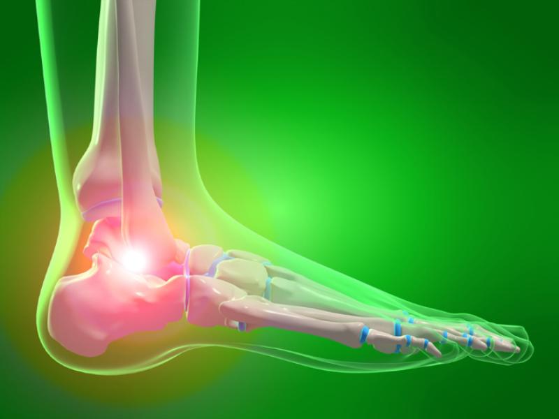 Thème santé - Anatomie pieds