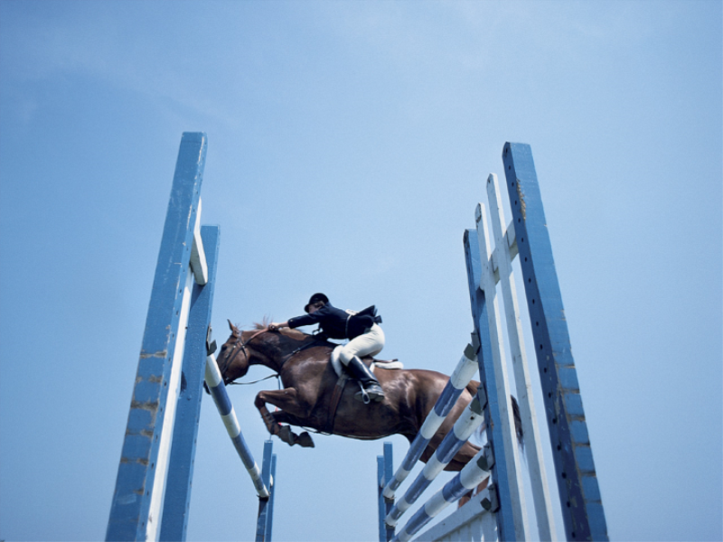 Thème équitation - Obstacles