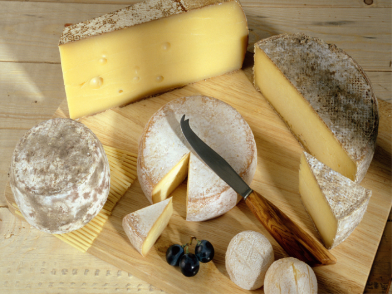 Thème fromage - Tomme