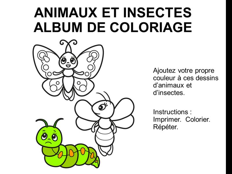 Album de coloriage sur les animaux et les insectes