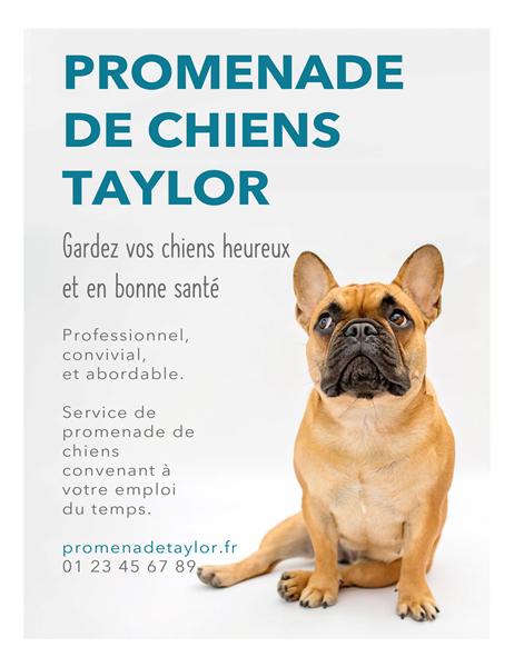 Affichette pour promeneur de chien