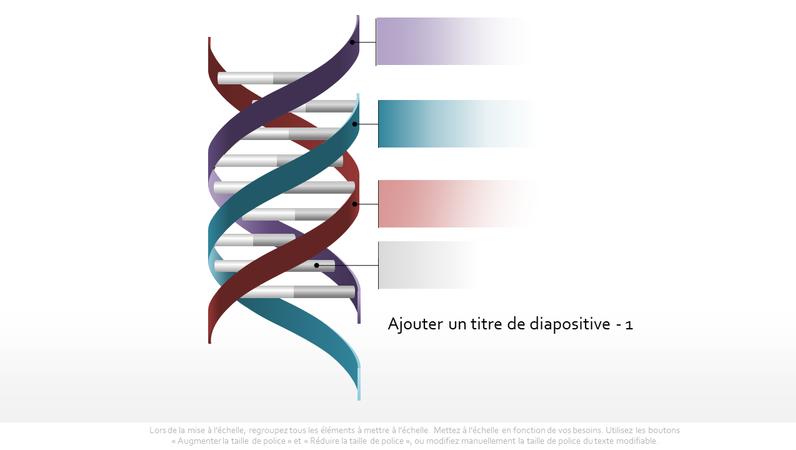 Graphique Triple hélice d'ADN