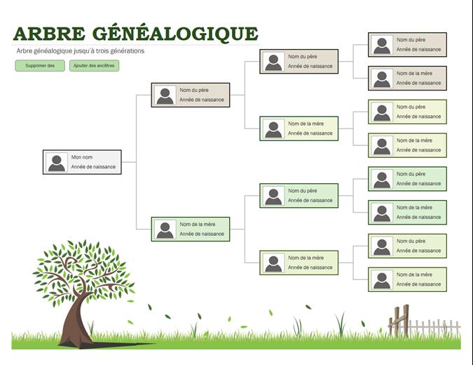Photo arbre généalogique
