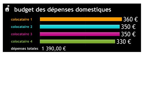 Budget des dépenses domestiques