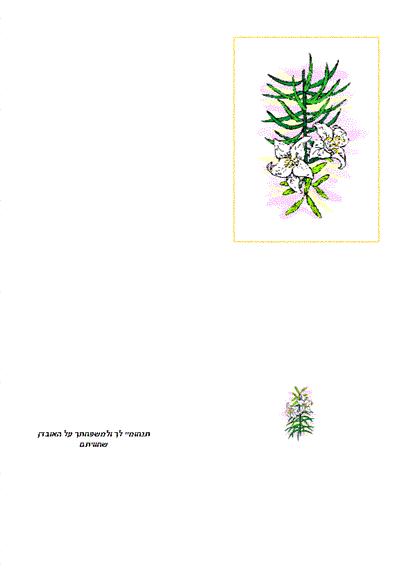 כרטיס סימפאטיה