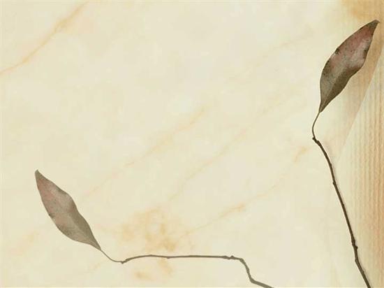 תבנית עיצוב - עלים מיובשים
