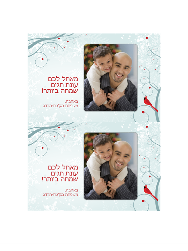 כרטיסי תמונה לחגים של פתית שלג (2 בכל עמוד)