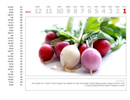 לוח שנה עם תמונות לשנת 2015