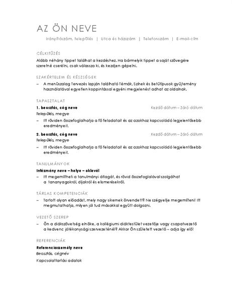 Időrendi önéletrajz (minimalista téma)