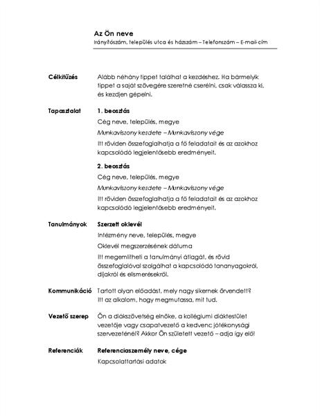Időrendi önéletrajz (Minimalista arculat)