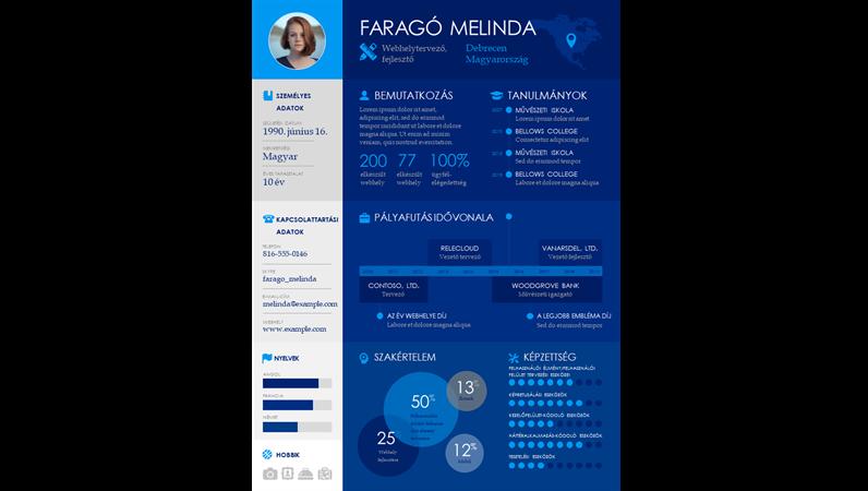 Idősor infografikus önéletrajz