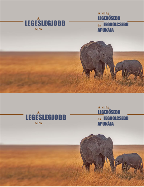 Bölcs elefántos apák napi képeslap