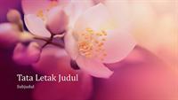 Presentasi bertema alam bunga sakura (layar lebar)