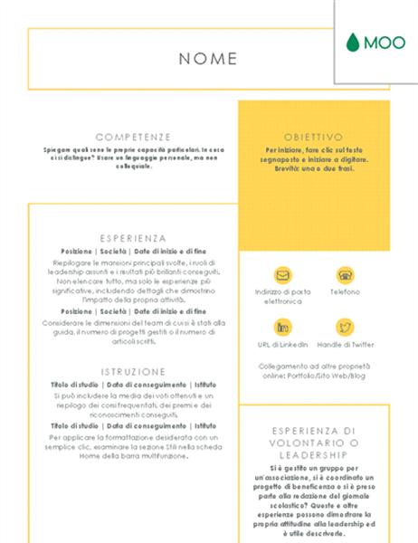 Curriculum conciso e immediato, progettato da MOO