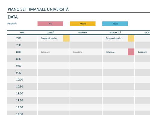 Programma settimanale università
