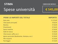 Stima spese università