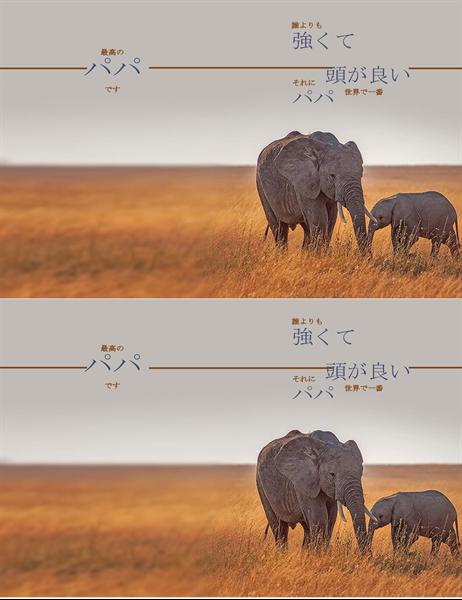 賢い象の父の日のカード