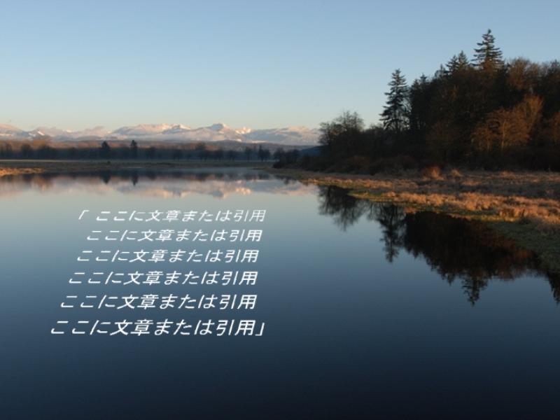 引用が透視投影で表示される図