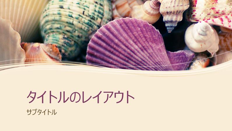 色とりどりの貝殻のコレクション