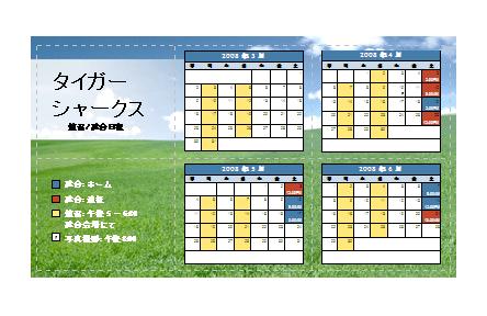 2008 年青少年スポーツ用ポケット日程表 (春季)