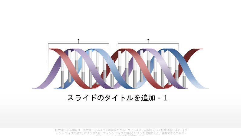 水平方向の DNA 図