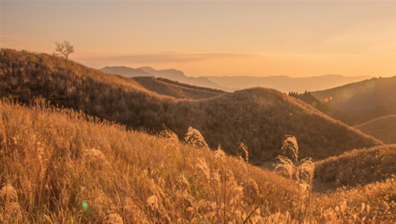 風景の Facebook バナー
