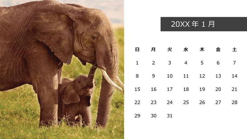 かわいい動物の写真付きカレンダー