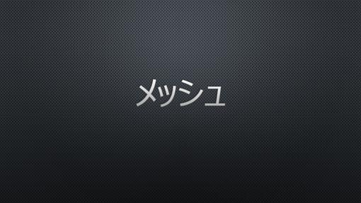 メッシュ (黒) 1