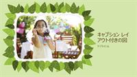 家族フォト アルバム (緑葉をあしらった自然志向のデザイン)