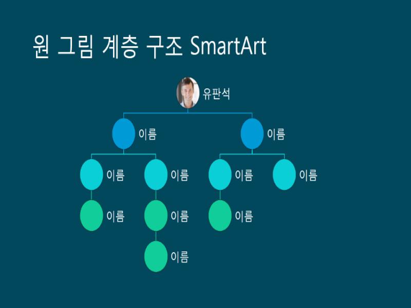 원 그림 계층 구조 조직도 슬라이드(파란색 바탕에 흰색), 와이드스크린