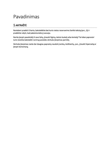 Ataskaitos dizainas (tuščias)