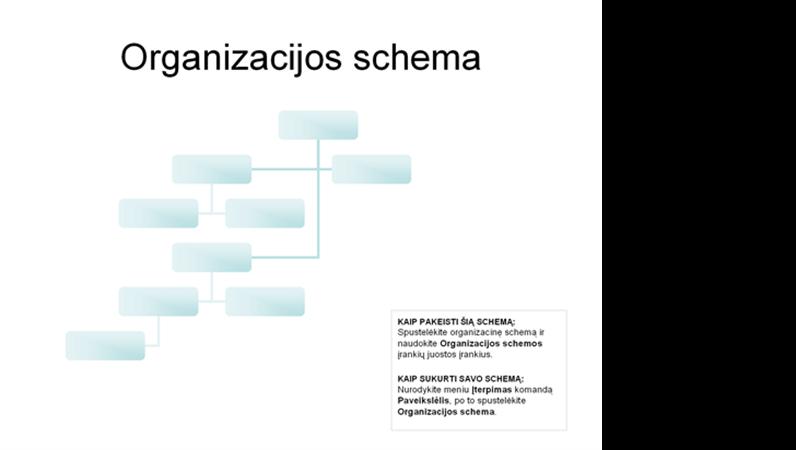Sudėtinga organizacijos schema