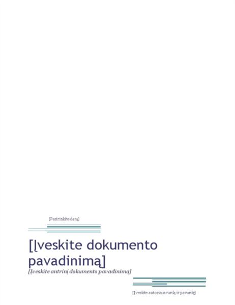 Ataskaita (miesto dizainas)