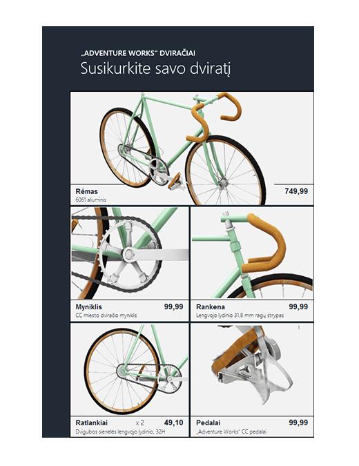 "3D ""Excel"" produktų katalogas (dviračio modelis)"