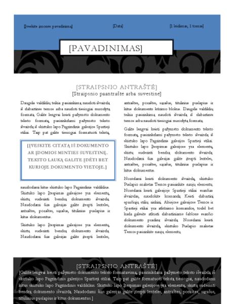 Informacinis biuletenis (juodos juostos maketas)
