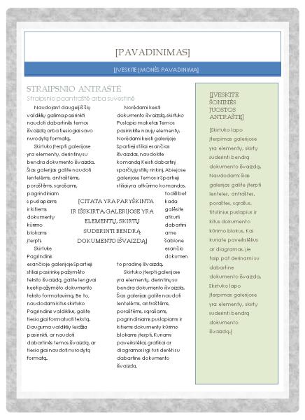 Informacinis biuletenis (vaistinės maketas)