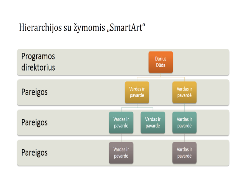 Organizacijos schema su hierarchija (plačiaekranis)
