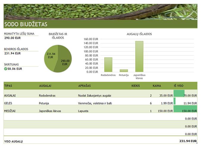 Sodo ir kraštovaizdžio projektavimo biudžetas