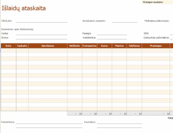 Išlaidų ataskaita