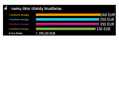 Namų ūkio išlaidų biudžetas