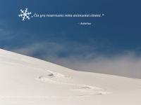 Animuota sniego scena