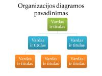 Paprasta organizacijos schema